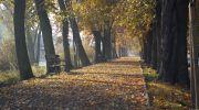 Jesień-w-obiektywie-23