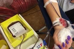 XV zbiórka krwi (2)
